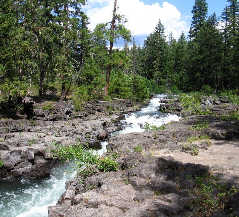 river forest men Home.